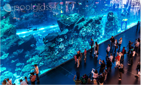 Акриловая панель в океанариуме